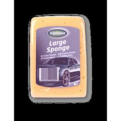 Large Sponge