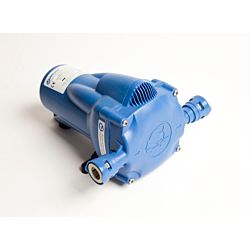 Watermaster Automatic Pressure Pump